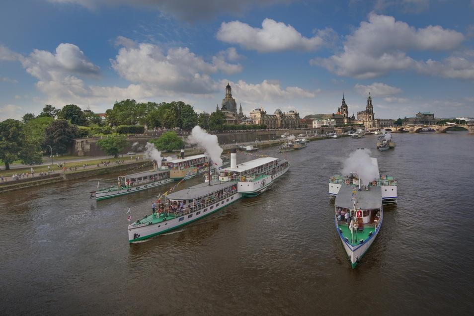 Die Dampferparade am Samstag auf der Elbe in Dresden.