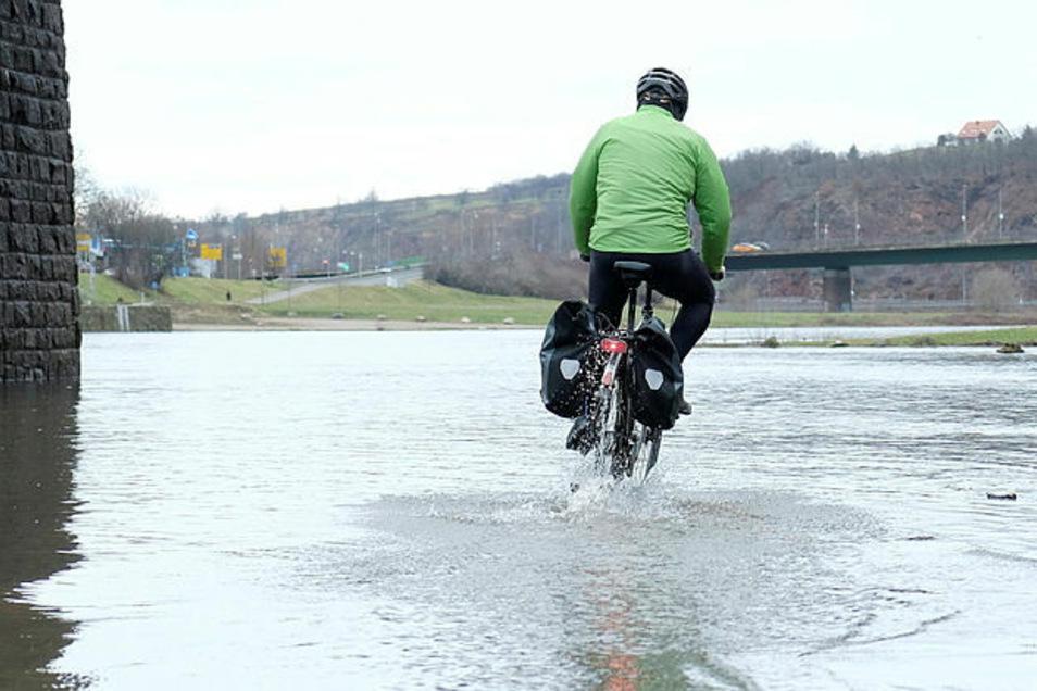 Die Elbe steigt an - ein Fahrradweg unter der Altstadtbrücke in Meißen.