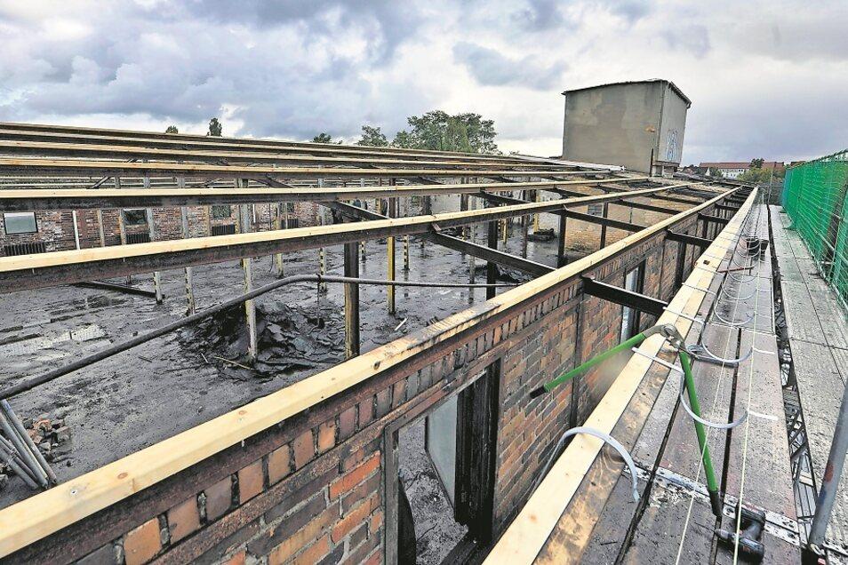 Ein Blick vom Gerüst auf das Dach des Neufert-Baus zeigt, dass es kein Dach mehr gibt, weshalb Regenwasser dauerhaft eindringen kann und selbst Bäume im Schutt wuchsen. Mittlerweile ist bereits das Gebälk erneuert, auf welches in wenigen Wochen ein hal