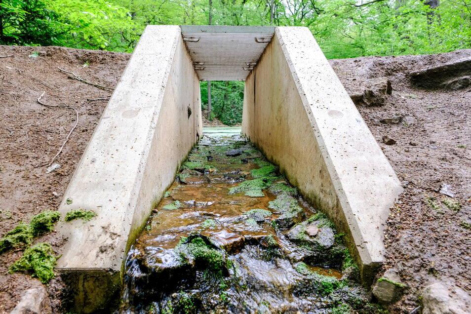 Der Überlauf an Schwarzes Teich mit dem Mönch in der Teichmitte ist undicht. Die Stadt geht davon aus, dass das neue Bauwerk vom Hersteller nachgebessert werden sollte.