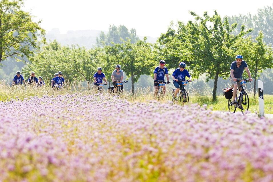 Seit 19 Jahren findet die Familienradtour statt. Jedes Mal gibt es eine neue Region zu entdecken.