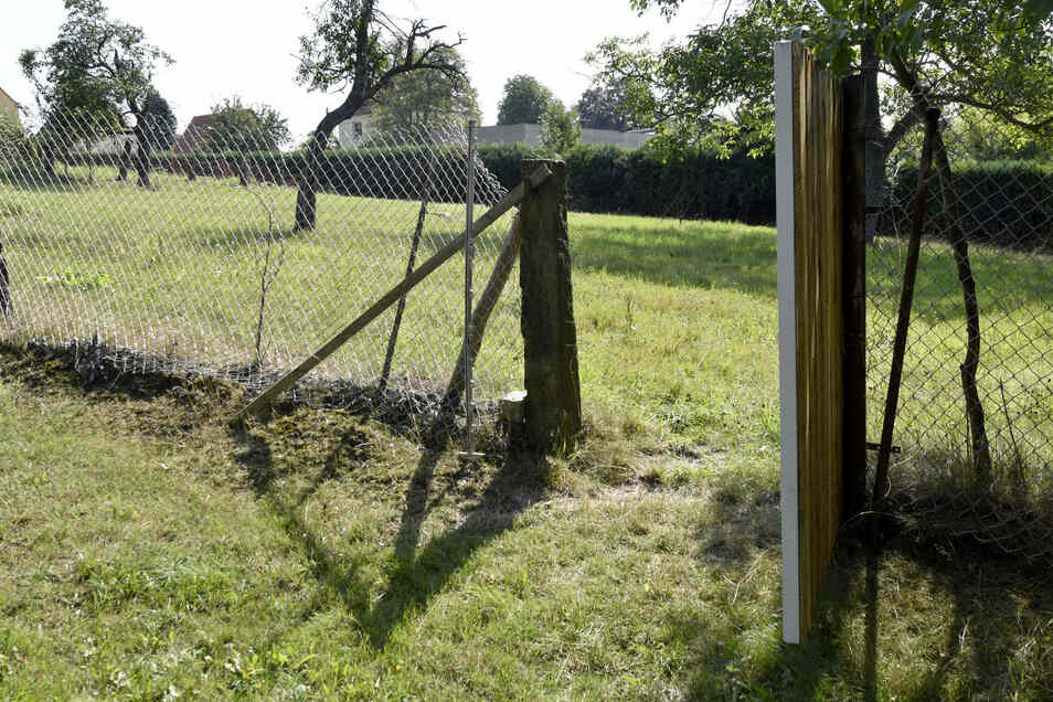 Selbst Hennigs Elektrozaun sei ja wirkungslos gewesen, berichtet der Landwirt.