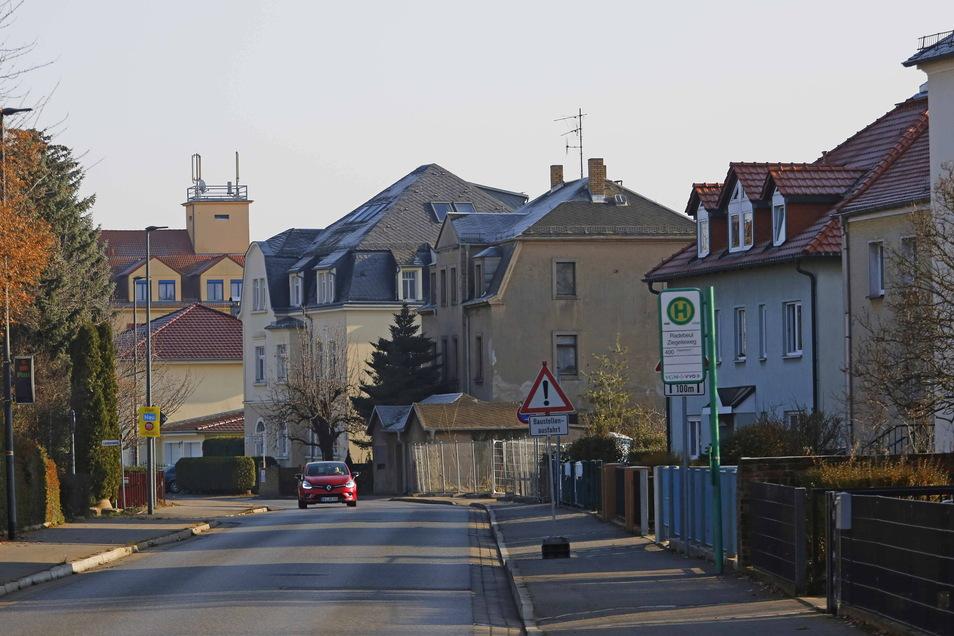 In Höhe des einstigen Planeta-Sportplatzes ist die Kötitzer Straße noch sehr baumfrei. Am Fahrbahnrand des Straßenzugs plant die Stadt 32 Neupflanzungen.