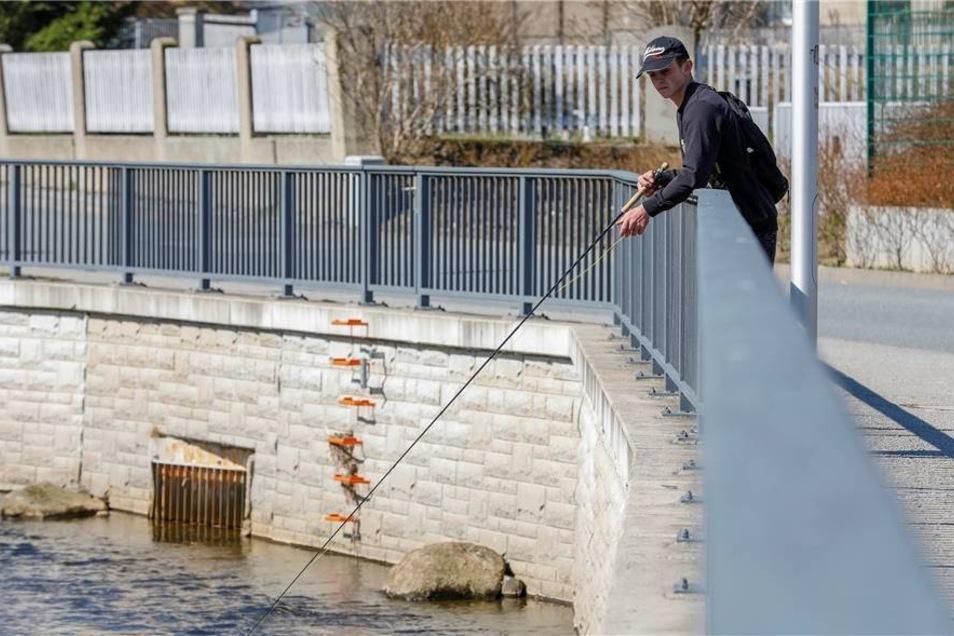 Aktiv an der frischen Luft: Das Frühlingswetter bietet Gelegenheit für zahlreiche Hobbys im Freien. Hier geht ein junger Angler am Löbauer Wasser seinem Hobby nach.