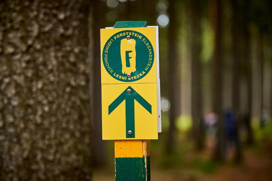 Hier geht's lang: typische Markierung auf dem Forststeig Elbsandstein.