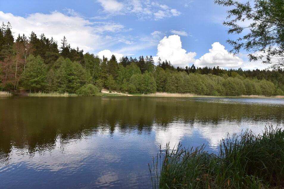 Der Heidemühlenteich heute. Laut Forst soll er auch nach der Schließung des Campingplatzes für jedermann zugänglich sein.