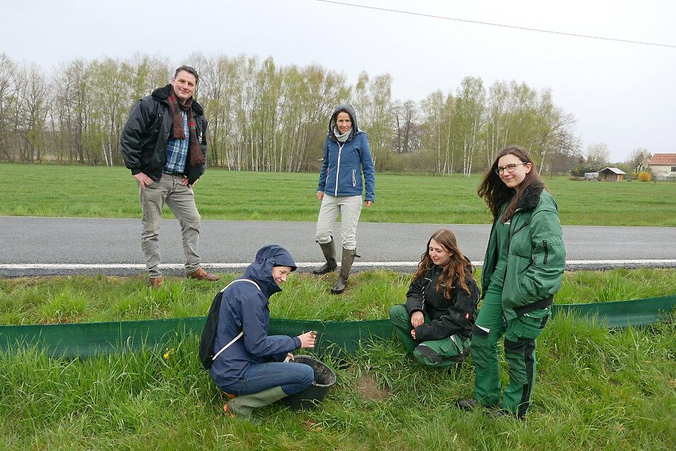 Bei der Amphibien-Schutzaktion (v.l.n.r): Eugène Bruins, Madlena Mitschke (Mitarbeiterin Naturschutzstation Neschwitz), Angelika Schröter, Olivia Wirth (FÖJ Zoo Hoyerswerda) und Marie Zenker (FÖJ Zoo Hoyerswerda).