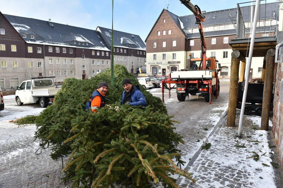 Bauhofmitarbeiter richteten den Baum wieder auf.