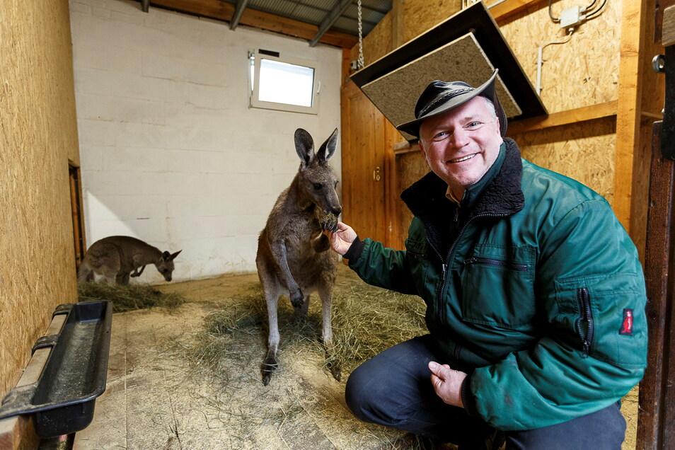 Tierparkdirektor Sven Hammer kann sich freuen: Für eines der Kängurus übernimmt F.T. Immobilien die Patenschaft.