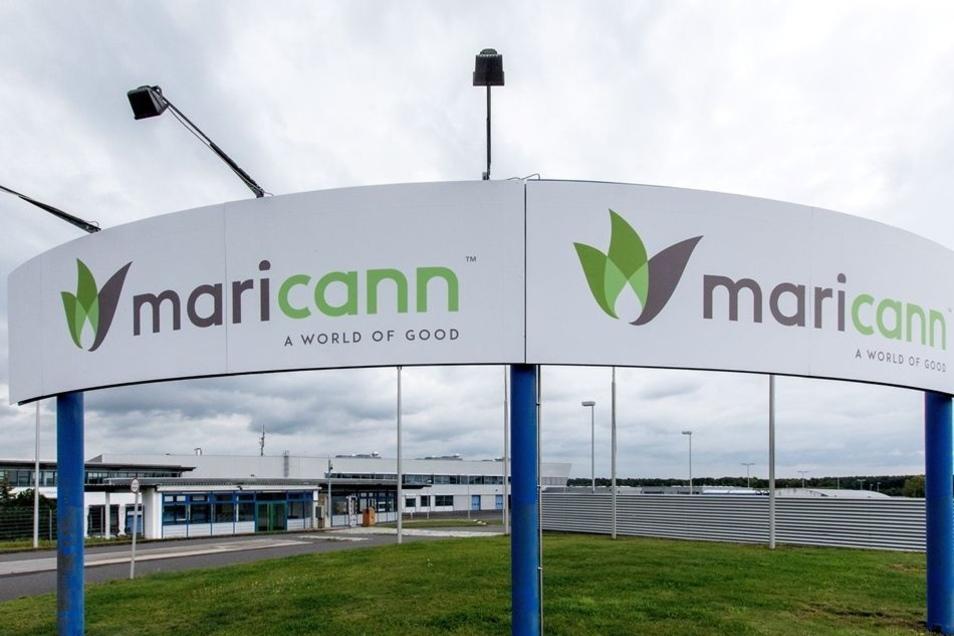Hier im ehemaligen Löblein-Schlachthof soll künftig medizinisches Cannabis produziert bzw. gehandelt werden.