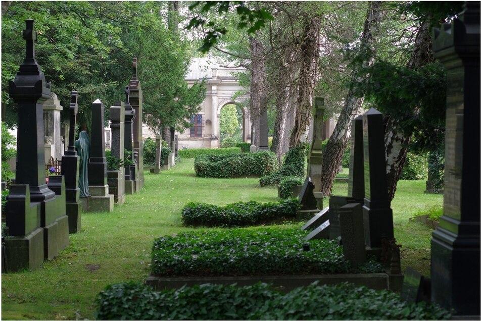 Mit ihrer Kamera fängt Lara Schink leidenschaftlich gern Szenen auf dem Friedhof ein.