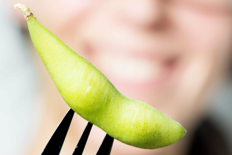 Junge Sojabohnen, Edamame genannt, lassen sich schnell und unkompliziert als Snack zubereiten.