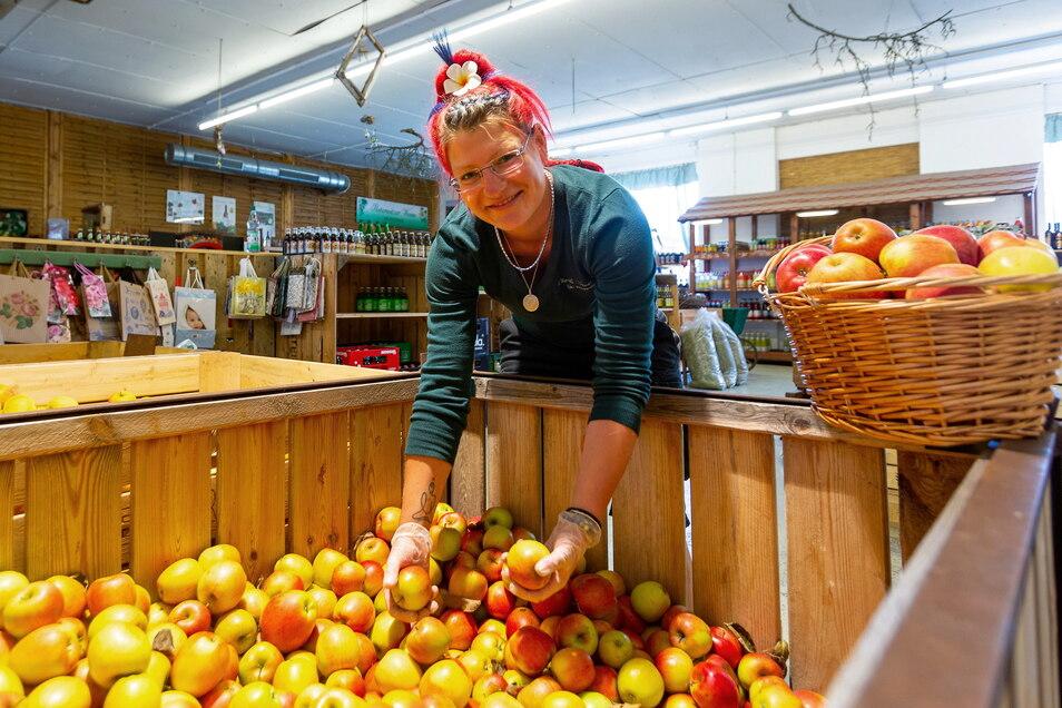 Verkäuferin Caroline Beeg an den Apfelkisten des Hofladens. Über dreißig Sorten Äpfel wachsen auf den Plantagen von Gut Pesterwitz.