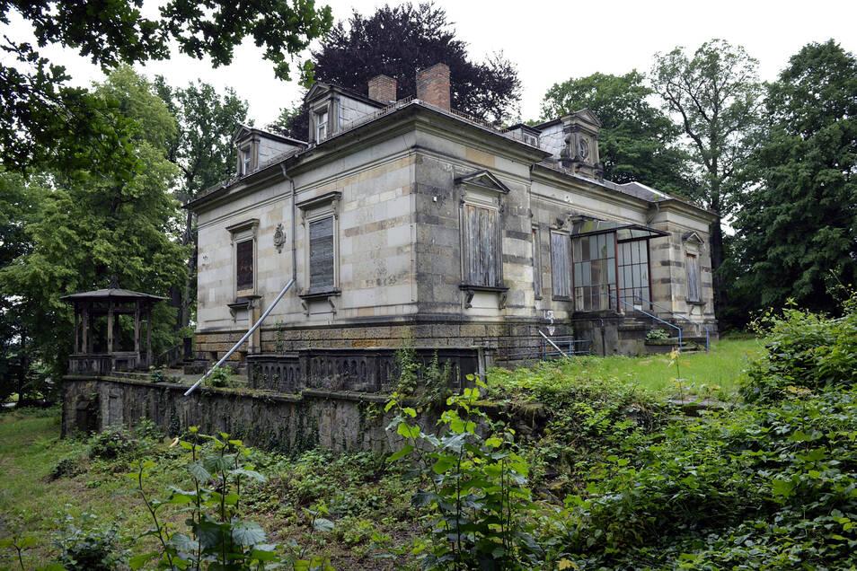 1869 als Wohnhaus errichtet, von 1952 bis 1995 als Kindergarten genutzt - die Geschichte der Erlwein-Villa ist vielseitig. Bis zum Beginn der Sanierung 2018 stand sie leer.