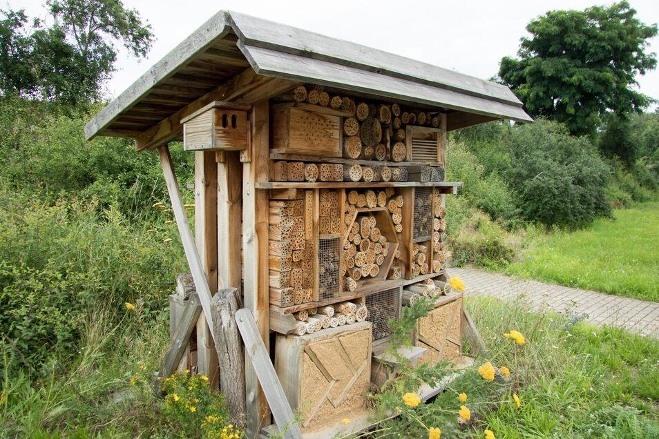 Solche Insektenhotels wurden in der Kaditzer Kläranlage aufgebaut. So gibt es dort immer bessere Bedingungen für Wildbienen, Schmetterlinge und andere Insekten.