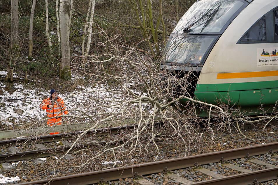 Bevor es - wie hier auf einem Archivbild - zu einer Kollision mit umgestürzten Bäumen kommt, ließ die Länderbahn Erkundungsfahrten auf der Strecke durchführen.