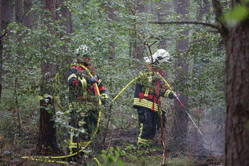 Mehrere Feuerwehren rückten zu dem Brand an der B 96 bei Zescha aus.