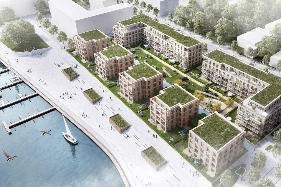So wird das Wohnensemble einmal aussehen. Vor den Stadtvillen verläuft der Elberadweg. Diesem schließt sich die Treppe zur Hafenpromenade an.