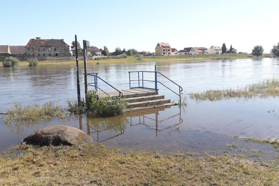Der Schiffsanleger in Riesa, gegenüber Promnitz, ist überschwemmt.