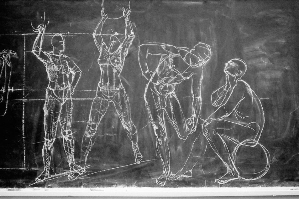 Wandtafelzeichnung von Gottfried Bammes aus dem Anatomieunterricht, 1980.