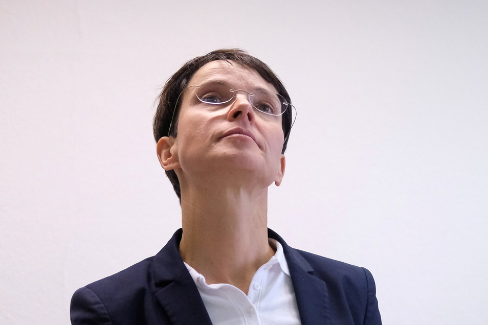 Die ehemalige AfD-Chefin Frauke Petry ist wegen Subventionsbetrug, Untreue und Steuerhinterziehung schuldig gesprochen worden.