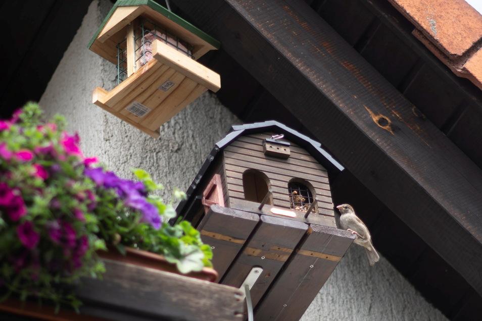 Auch auf den Balkonen haben die Schwedas noch Nistkästen und Futterhäuschen angebracht.