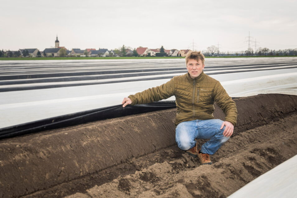 Landwirt Julius von der Decken am Spargelfeld in Nauwalde: Noch sind in den frisch gefrästen Dämmen keine Stangen zu sehen. Es ist schlicht zu kalt.