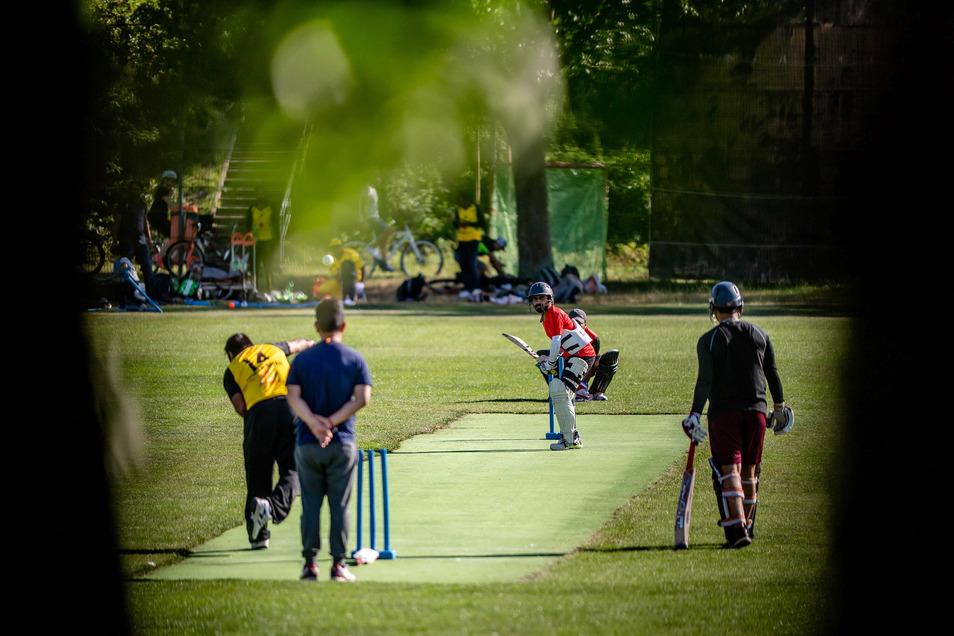 Während sich die Cricket-Teams im Sportpark Ostra spannende Spiele liefern, schauen möglicherweise auch Wettbetrüger nach Dresden.
