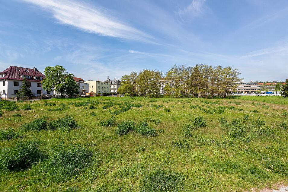 Die Brache an der Leßkestraße hinter dem Parkplatz des Ärztehauses soll bebaut werden.
