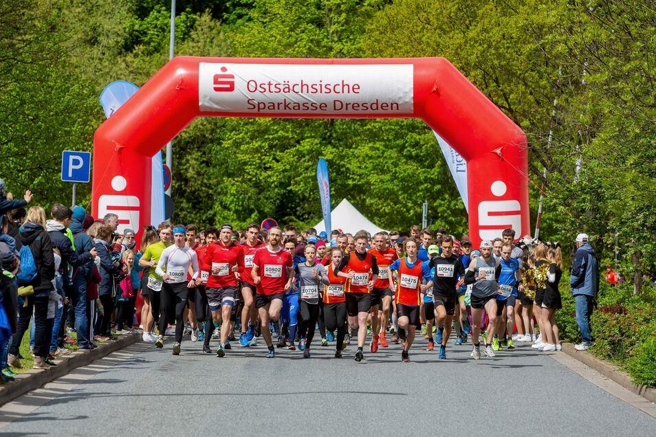 Der Zehn-Kilometer-Hauptlauf startete am Sonntag um 11.30 Uhr.