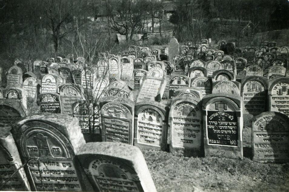 Der jüdische Friedhof von Tarnogrod im April 1940. Viele Einwohner des Ortes wurden später im nahen Vernichtungslager Belzec ermordet.