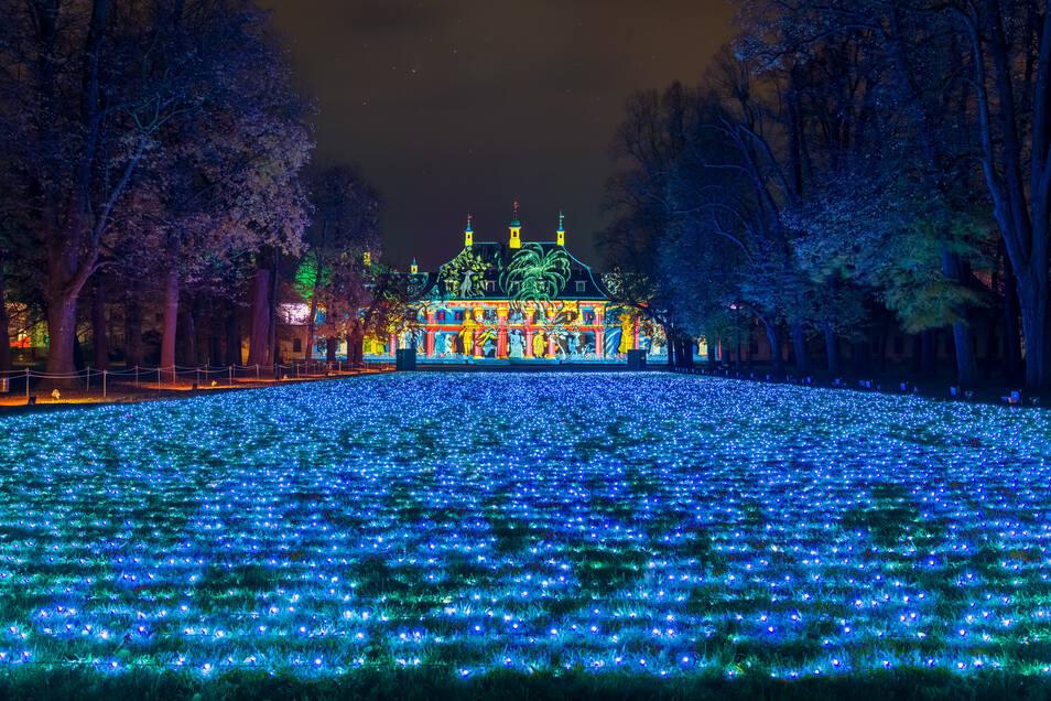 Field of Lights im Schloss & Park Pillnitz