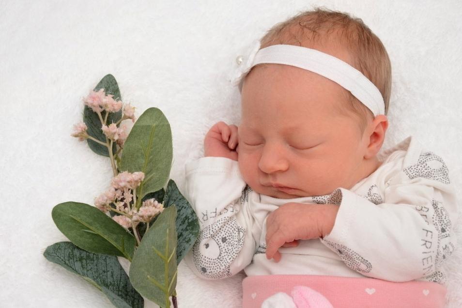 Milla, geboren am 24. Juli, Geburtsort: Städtisches Klinikum Dresden, Gewicht: 2.680 Gramm, Größe: 46 Zentimeter, Eltern: Sylvia Hirrich, Wohnort: Königsbrück