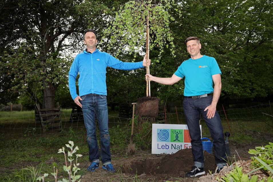 Oberbürgermeister Marco Müller (CDU, l.) und Herausforderer Gunnar Hoffmann mit der gemeinsam gepflanzten Hängebirke.