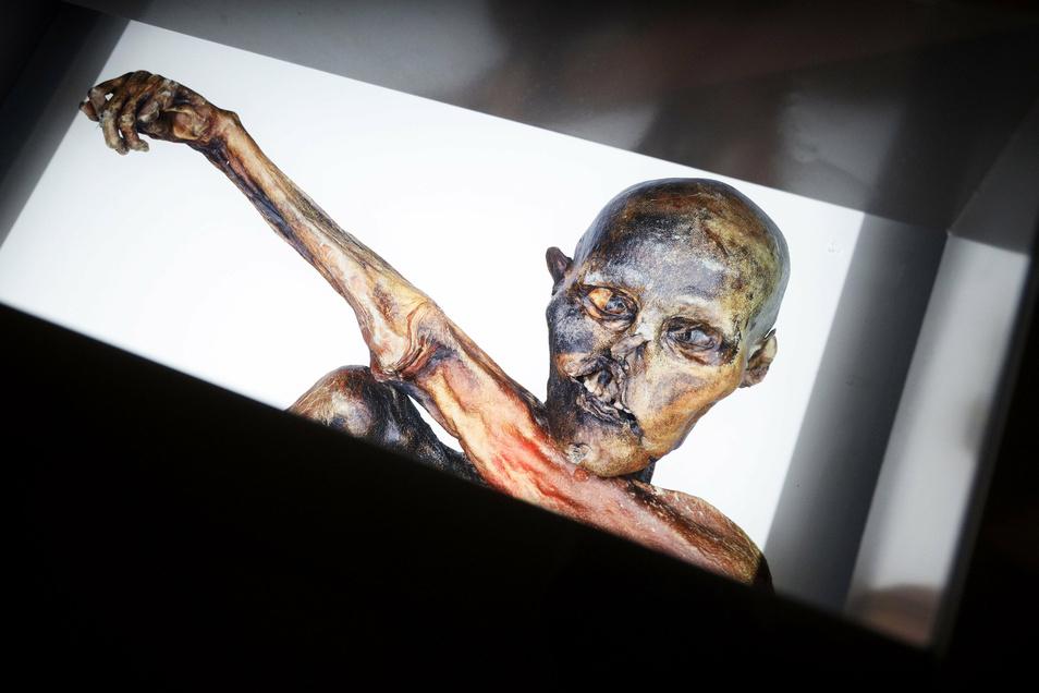 1991 wurde der Gletschermann in Südtirol gefunden. Zuerst ging die Polizei von einem Mord aus. Später gaben Archäologen der Mumie den Namen Ötzi, weil sie am Ötztal gefunden wurde.