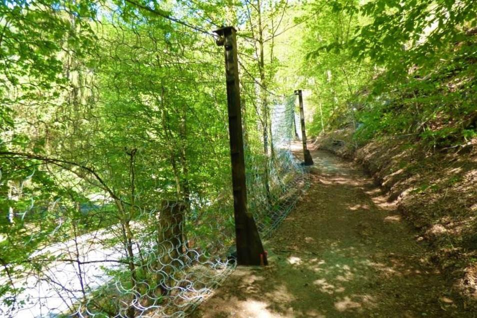 Fangzaun oberhalb der Kirnitzschtalstraße: Hält von Wildschweinen losgetretene Steine auf.