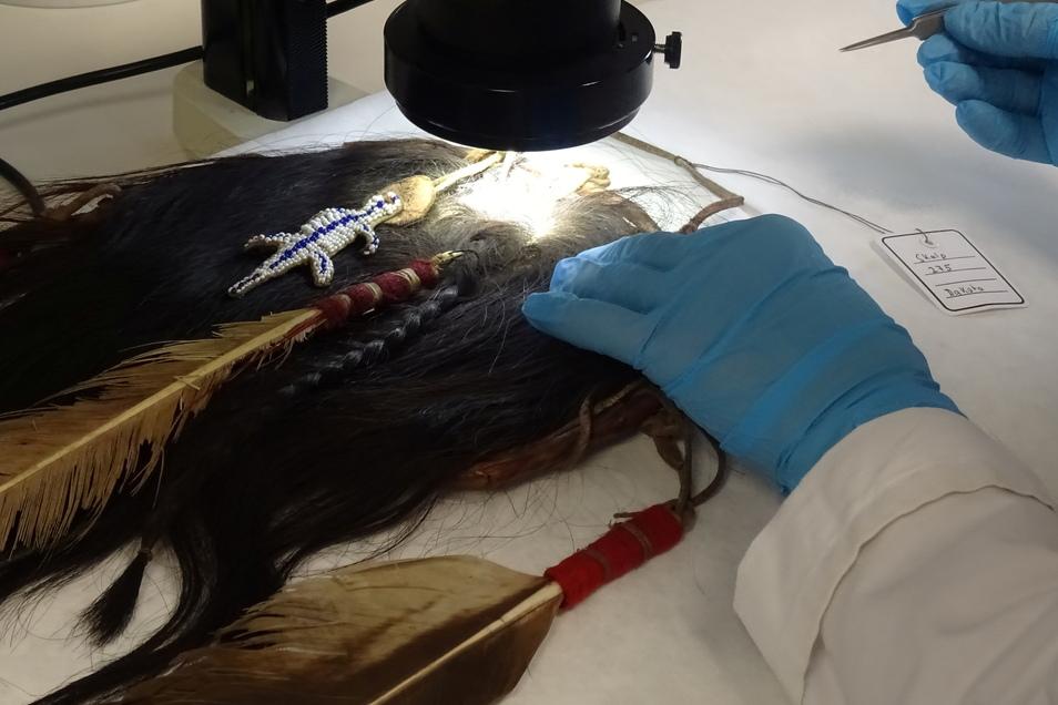 Sogar das Landeskriminalamt Sachsen half bei den Forschungen. Dort wurde der Skalp haarmorphologisch untersucht, um die menschliche Herkunft nachzuweisen. Dafür wurden die Haare und Haarwurzeln unter dem Mikroskop optisch geprüft, ohne das Objekt dabei