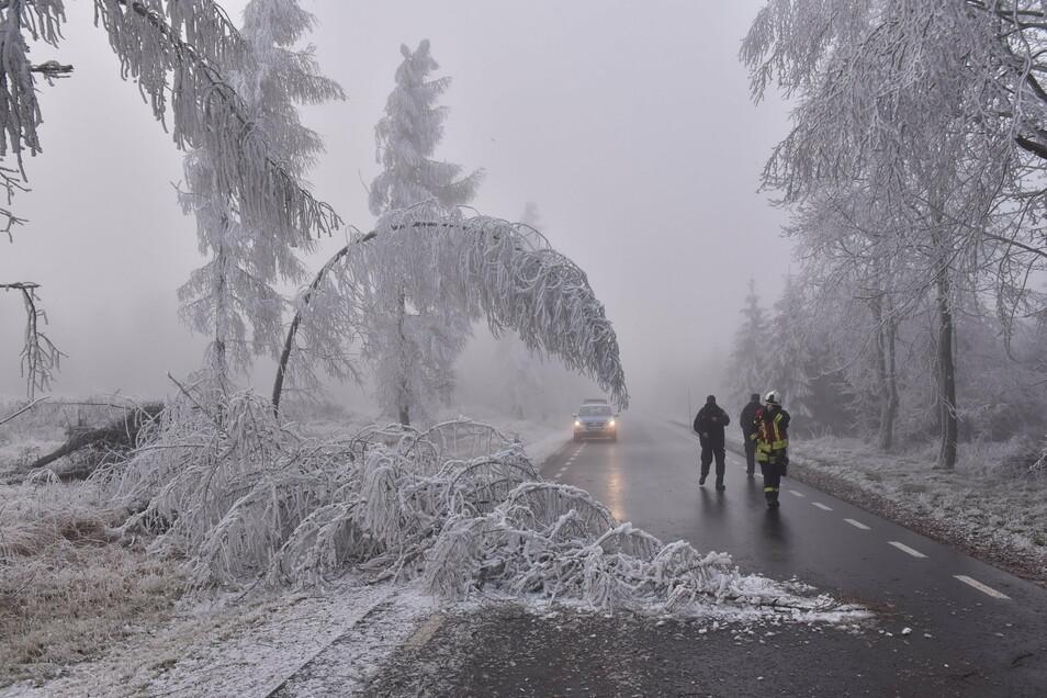 Am Sonntagnachmittag musste die Altenberger Feuerwehr die Verbindungsstraße zwischen Altenberg und Rehefeld von Bäumen befreien.