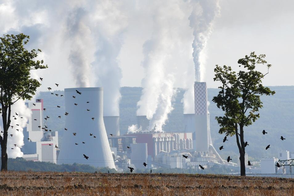 Mit dem Tagebau in Turow sind vier bis sieben Prozent der Energieerzeugung in Polen verbunden.