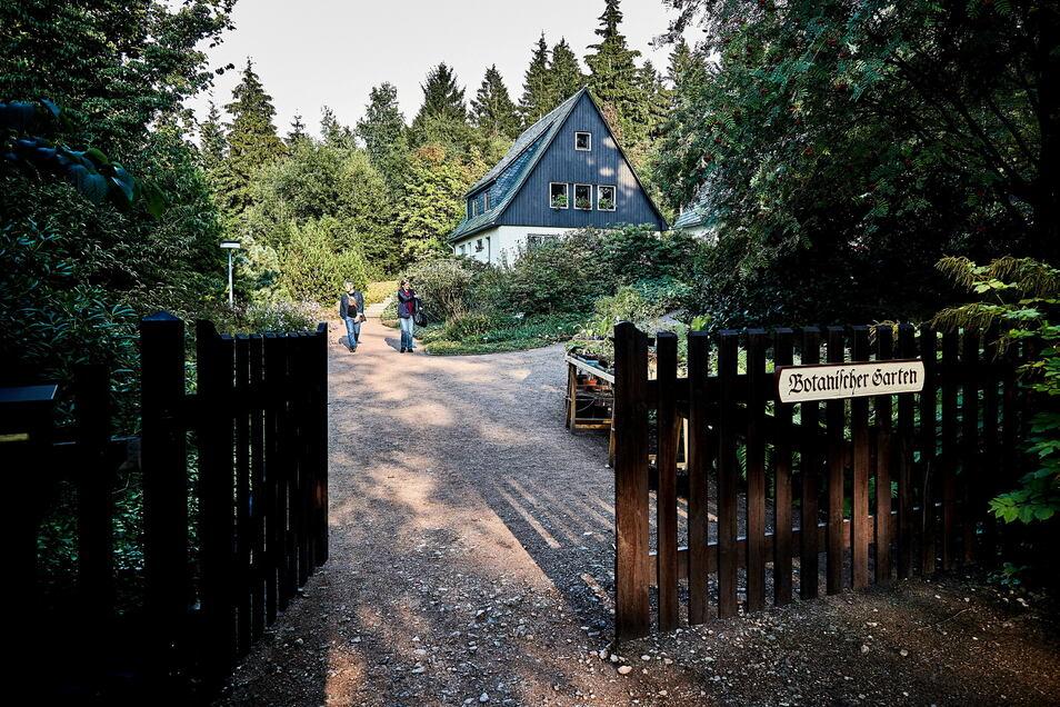 Zum Eintritt in den Botanischen Garten Schellerhau gehört ein aktueller Testnachweis.