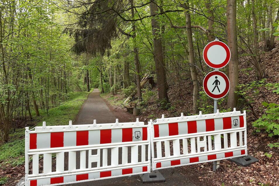 Der Rauschenthaler Weg in Waldheim ist gesperrt. Grund dafür sind schadhafte Bäume, welche die Sicherheit von Wanderern gefährden.