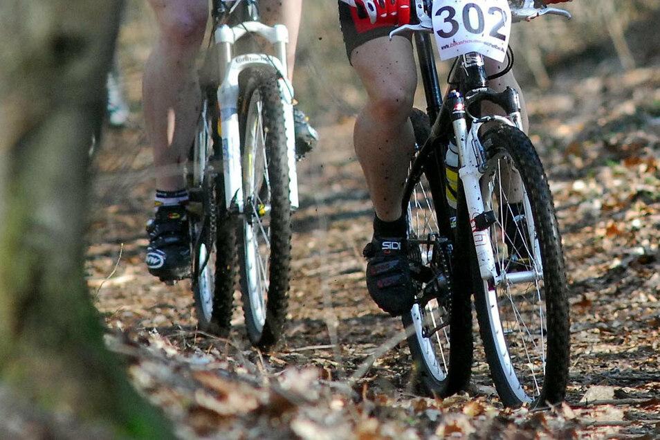 Vermutlich Radsportler haben im Bautzener Humboldthain unerlaubt Rampen angelegt. Dagegen geht die Stadt jetzt vor.