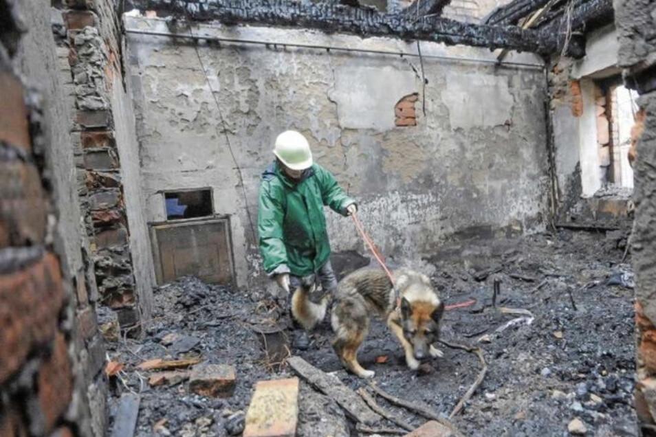 Mit Hunden wurde 2009 das explodierte Wohnhaus in Walda durchsucht. Nach fünf Tagen wurde die Leiche des Kunstmalers Gunther Augsten gefunden. Sein Mörder befindet sich in der Psychiatrie.
