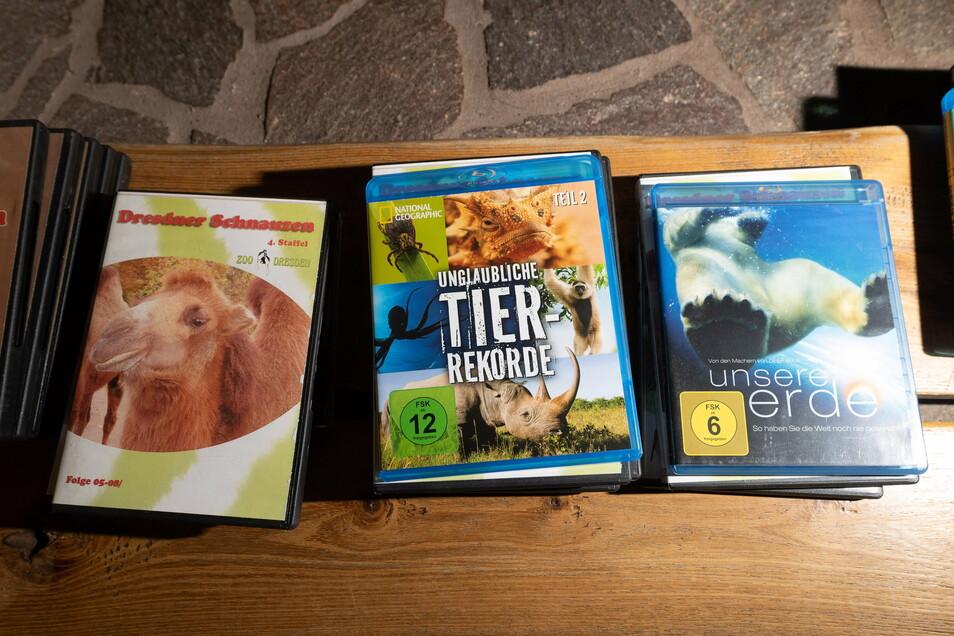 """Tier-Dokus sollen für Abwechslung bei den Orang-Utans sorgen. Auch die Serie aus dem Dresdner Zoo, """"Dresdner Schnauzen"""", steht mit auf dem TV-Programm."""