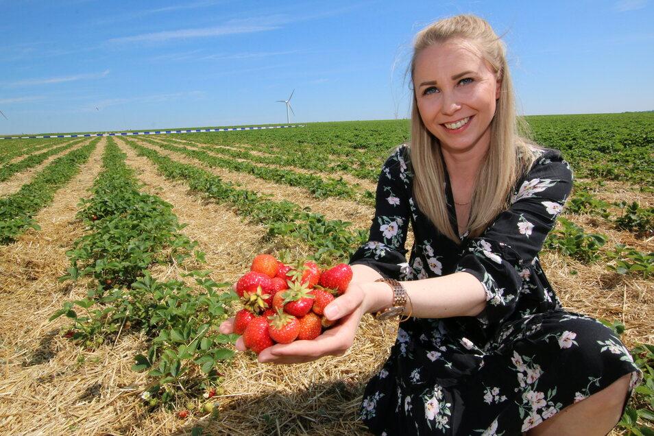 Alaine Masur, die bei der Obstland Dürrweitzschen AG für die Direktvermarktung zuständig ist, mit den ersten Erdbeeren der Saison.