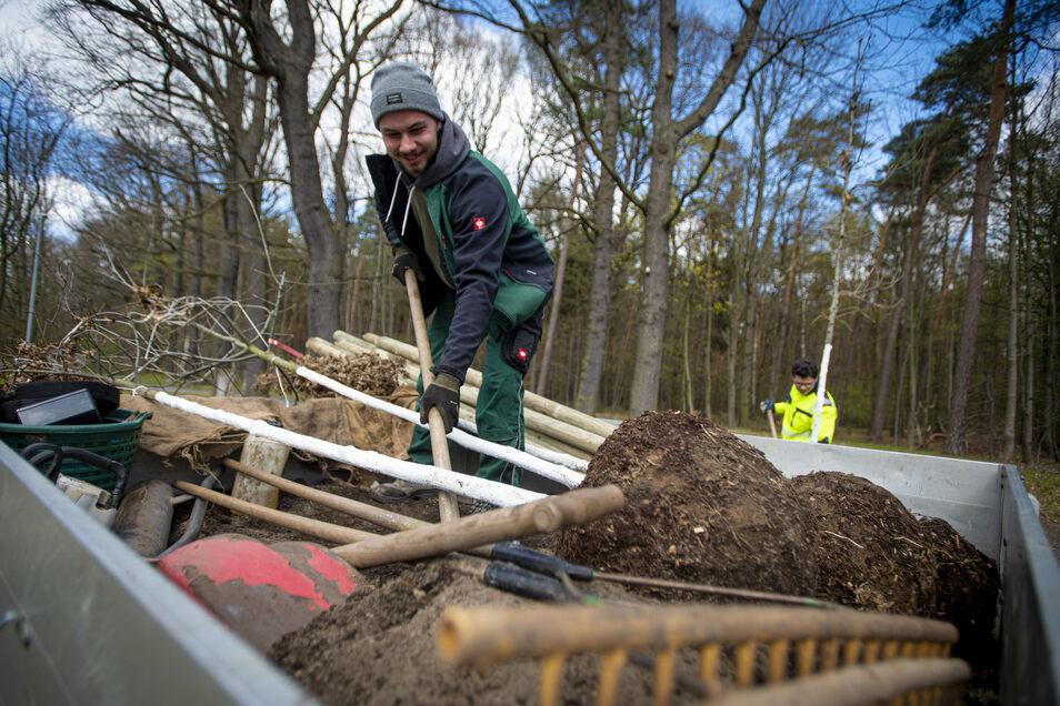 Tobias Grosche (l.) und Jonas Gessert von der Stadtgärtnerei pflanzen dieser Tage Bäume am Forstfestplatz in Kamenz. Die Ungarischen Eichen, die gefällte Bäume ersetzen, sollen gut mit Trockenheit klarkommen.
