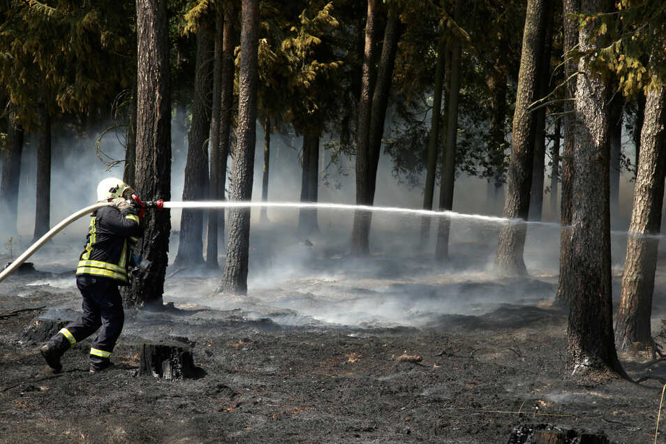 Waldbrände wie hier in Waldhufen könnten mithilfe von Sensoren und Drohnen schon im Entstehen entdeckt werden.