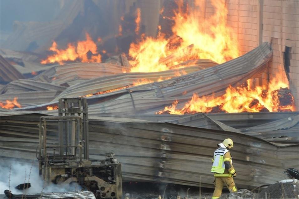 Feuerinferno im Februar im WHG Holzhandel auf dem Tännichtweg in Coswig-Kötitz. Der Holzhandel ist wieder geöffnet, im ebenfalls brandgeschädigten Dehner-Gartencenter in Brockwitz soll es im Herbst weitergehen.