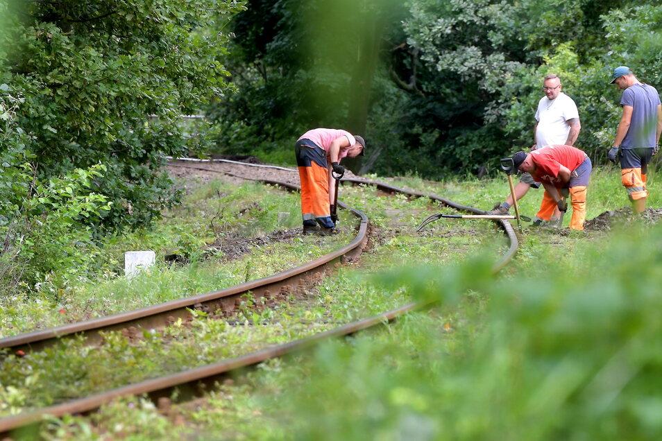 Polnische Arbeiter reparieren die Eisenbahnstrecke zwischen Zittau und Liberec auf polnischem Gebiet.