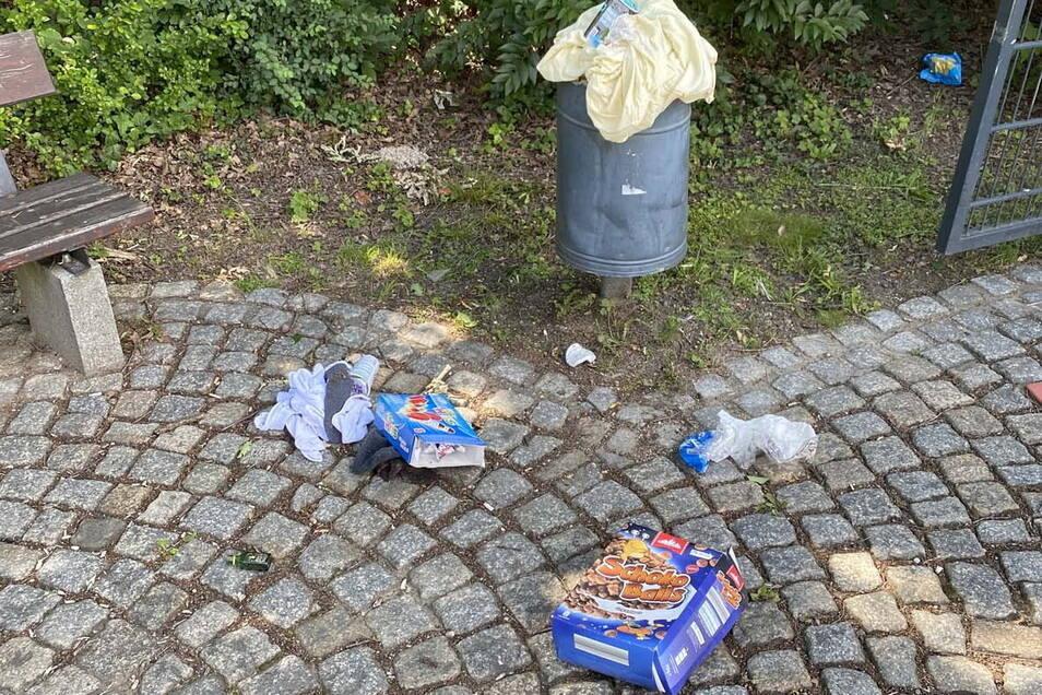 Vermüllung im Pontegarten.